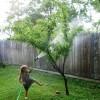 Ashley ve onun eşi Tommy Oliver'in düğününde gitmeden önce Ayla bahçeyi suladı…